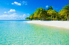 Paradise Beach on beautiful island Stock Photos