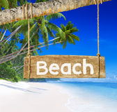 Paradise Beach Display with Wood Board Stock Photography