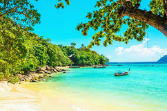 Paradise beach with golden sand and exotic trees. Paradise beach with golden sand, exotic trees and blue sky Stock Images
