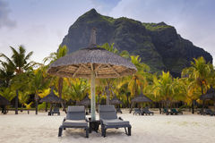 Paradise beach.Honeymoon o tropical island of Mauritius Stock Photography