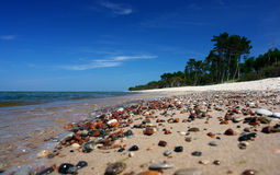 Paradise beach, intensive colors. Some pebbles, intensive blue sky. Clear sand and water royalty free stock image