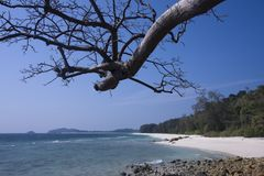 Paradise beach at Koh Adang, South Thailand Stock Photography
