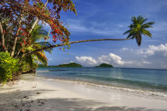 Paradise beach of Koh Mak Stock Photography