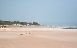 Paradise Beach. Long Hai, Vietnam. Sea coast, trees, sand and sky Stock Images