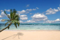 Paradise Beach With Nobody Around Stock Photography