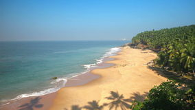 Paradise beach with palm trees, aerial view. Kerala, India. stock video