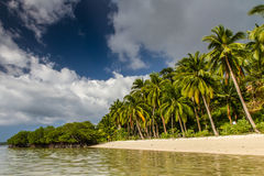 Paradise beach with palms-Port Barton,Philippines Stock Photos