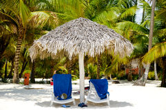Paradise beach with palms and sunbeds Stock Images