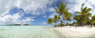 Paradise beach panoramic view. Paradise white sand beach and palm tree of a tropical island panoramic view Stock Images