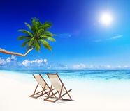 Paradise Beach for Relaxation with Beach Chairs. Paradise Beach for Relaxation with Palm Trees and Beach Chairs Stock Photography