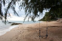Paradise beach with rope tree swing and palms royalty free stock images