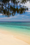 Paradise beach and sea on island, Gili Islands. Paradise beach and sea on island, white sand and blue water, with tree above, Gili Islands stock image