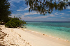 Paradise beach and sea on island, Gili Islands. Paradise beach and sea on island, white sand and blue water, with tree above, Gili Islands royalty free stock photography