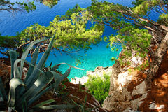 A paradise beach seen from above, green vegetation. stock images