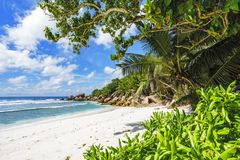 Paradise beach on the seychelles, anse cocos, la digue 20 Royalty Free Stock Photos