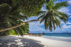 Paradise beach on the seychelles 22 Royalty Free Stock Photos