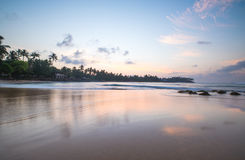 Paradise beach of Sri Lanka at sunrise. Tropical paradise beach with ocean and palm trees at sunrise in Mirissa, Sri Lanka Stock Photography