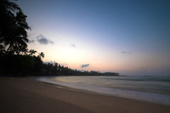 Paradise beach of Sri Lanka at sunrise. Tropical paradise beach with ocean and palm trees at sunrise in Mirissa, Sri Lanka Royalty Free Stock Photography
