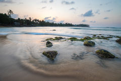 Paradise beach of Sri Lanka at sunrise. Tropical paradise beach with ocean and palm trees at sunrise in Mirissa, Sri Lanka Stock Images