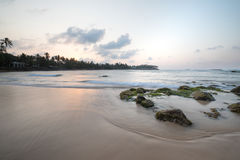 Paradise beach of Sri Lanka at sunrise. Tropical paradise beach with ocean and palm trees at sunrise in Mirissa, Sri Lanka Royalty Free Stock Photos