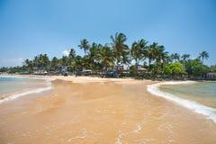 Paradise beach of Sri Lanka. Tropical paradise beach with ocean and palm trees in Mirissa, Sri Lanka Royalty Free Stock Image