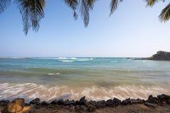 Paradise beach of Sri Lanka. Tropical paradise beach with ocean and palm trees in Mirissa, Sri Lanka Stock Photos