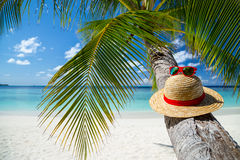 Paradise beach. Straw hat with sunglasses in front of paradise beach Stock Images