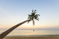 Paradise beach sunset tropical palm trees Royalty Free Stock Photos
