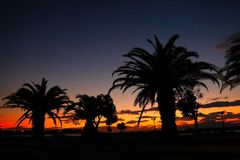 Paradise beach sunset tropical palm trees Stock Images