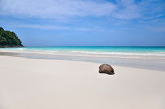 Paradise Beach at Ta chai Island Royalty Free Stock Photography
