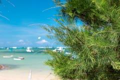 Paradise beach on a tropical Bali island, Indonesia. Stock Photo