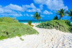 Paradise beach of Tulum, Quintana Roo, Mexico. Mayan ruins of Tulum at tropical coast stock photos