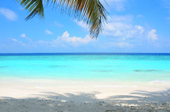Paradise beach. With turquoise waters on the Indian ocean Stock Photos