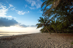 Paradise beach with white sand and palms. Kenya Stock Photography