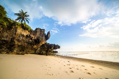 Paradise beach with white sand and palms. Kenya Royalty Free Stock Photography