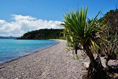 Paradise beach. Beach in the Whitsunday National Park, Australia Stock Photography