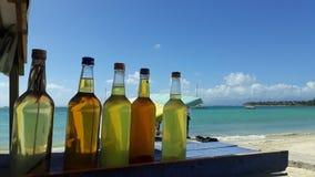 Paradise beverages royalty free stock image