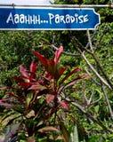 Paradise on the Big Island Royalty Free Stock Photos