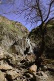 Paradise cai parque Thousand Oaks Calif?rnia da floresta virgem da cachoeira foto de stock