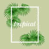 Paradise card with palms leaves. Design for advertising booklets, banners, greeting cards and flayers Stock Images