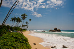 Paradise. Coast in Sri Lanka Indian Ocean stock photos