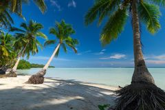 Paradise deserted tropical beach in Indonesia Stock Photos