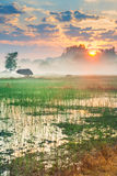 Paradise on the earth in Chiangrai Thailand Stock Photo