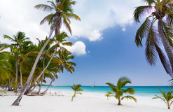 Paradise on earth Royalty Free Stock Photography