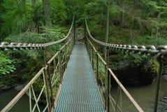 Paradise eslovaco, ponte sobre o rio de Hornad imagens de stock