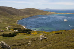 Paradise in the Falklands Royalty Free Stock Photography