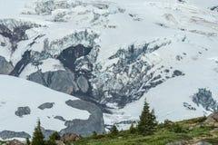 Paradise Glacier on Mount Rainier Stock Photos
