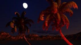 Paradise on Hawaii Island Royalty Free Stock Images