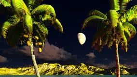 Paradise on Hawaii Island Royalty Free Stock Photography