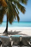 Paradise. Isla Saona. Stock Photo